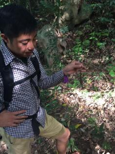 Dai, our guide, picking up lizards.